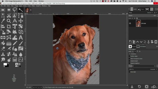 GIMP 2.10 Made Easy for Beginners.  Learn GIMP from a pro!