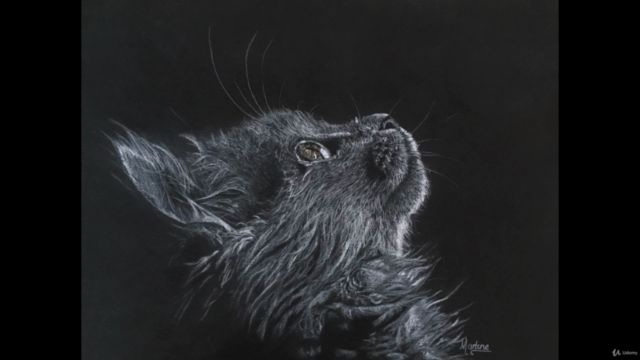 Cat in colored pencils on sanded paper