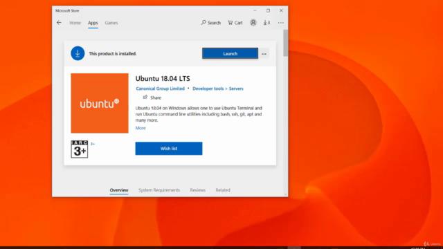 UBUNTU Linux Server