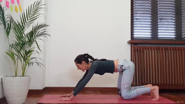 Yoga  Dinamico: impara le Basi in 10 giorni
