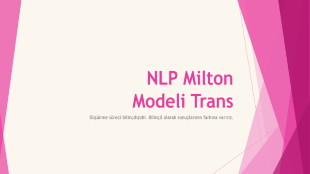 NLP Milton Modeli Trans