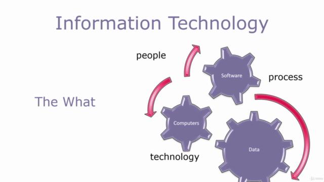 IT Industry Primer