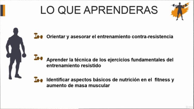 Principios del entrenamiento para la ganancia muscular