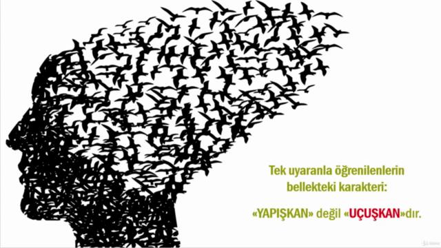 MEGA HAFIZA TEKNİKLERİYLE ARAPÇA KELİME EZBERLEME (A-HA!)