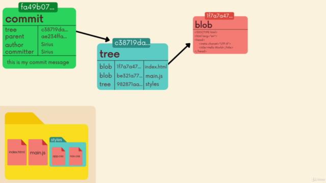 The Git & Github Bootcamp