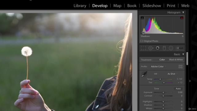 Lightroom CC Masterclass   Beginner guide for Photographers!