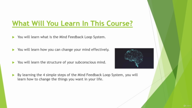 Reprogram Your Mind With The Mind Feedback Loop System©