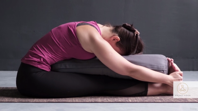 Yin Yoga Teacher Training Certificate Course