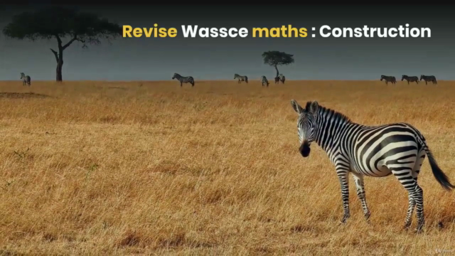 Revise Construction and Loci for Wassce Maths