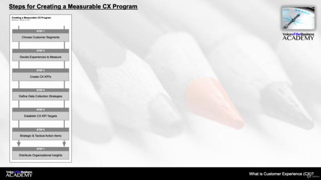 Implementing a Customer Experience (CX) Program