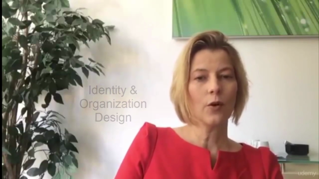 Organizational Culture, Identity and Change